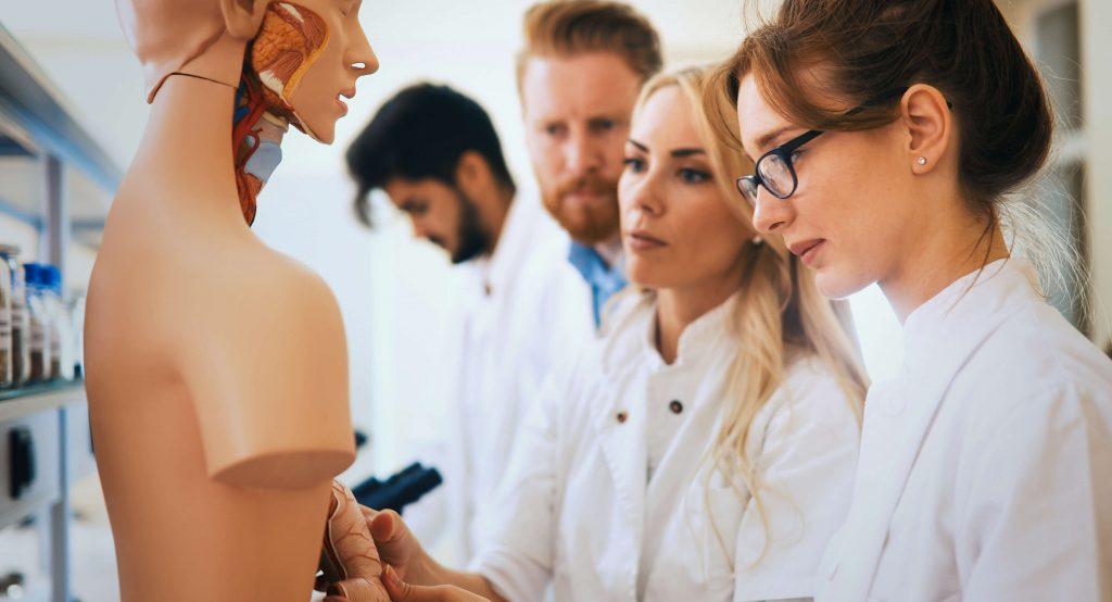 fisioterapia el carmen discplina salud